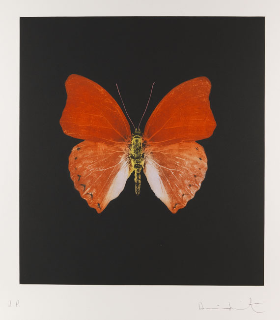 Damien Hirst - Butterfly